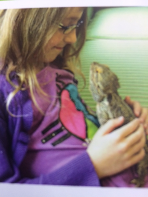 Students can hold, pet and help take care of a variety of touchable animals like rabbits, Guinea pigs and lizards...